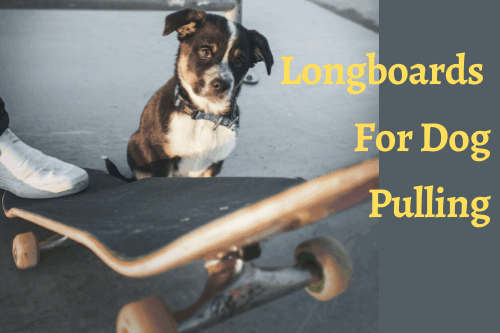 best Longboards For Dog Pulling